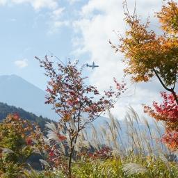 Autumn colours at Mt. Fuji