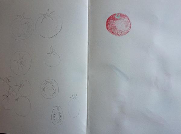 kat-illustrates-assignment2-studies (7)