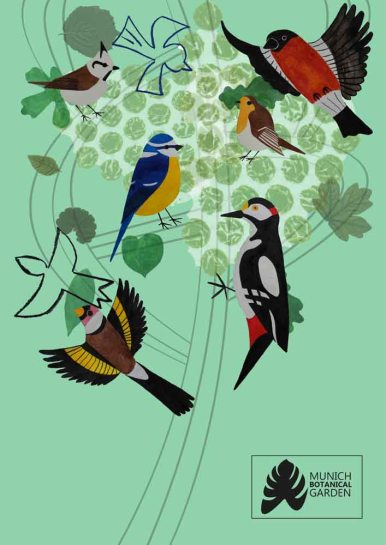 kat-illustrates-museum-posters-birds (5)