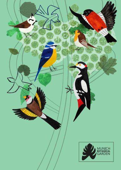 kat-illustrates-museum-posters-birds (6)