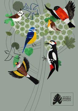kat-illustrates-museum-posters-birds (7)