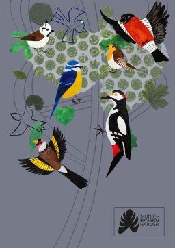 kat-illustrates-museum-posters-birds (8)