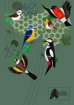 kat-illustrates-museum-posters-birds (9)